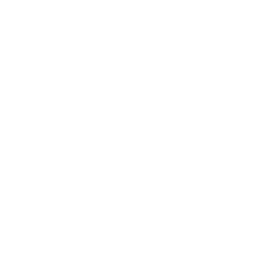 selfstorage_icon_300x300